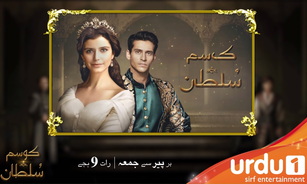 Urdu1 Digital Media Planning